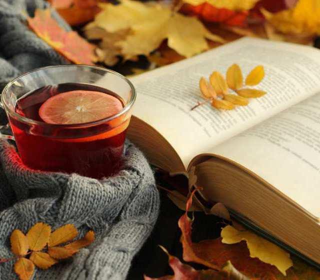 Herbstzeit heißt: Zeit für Bücher!