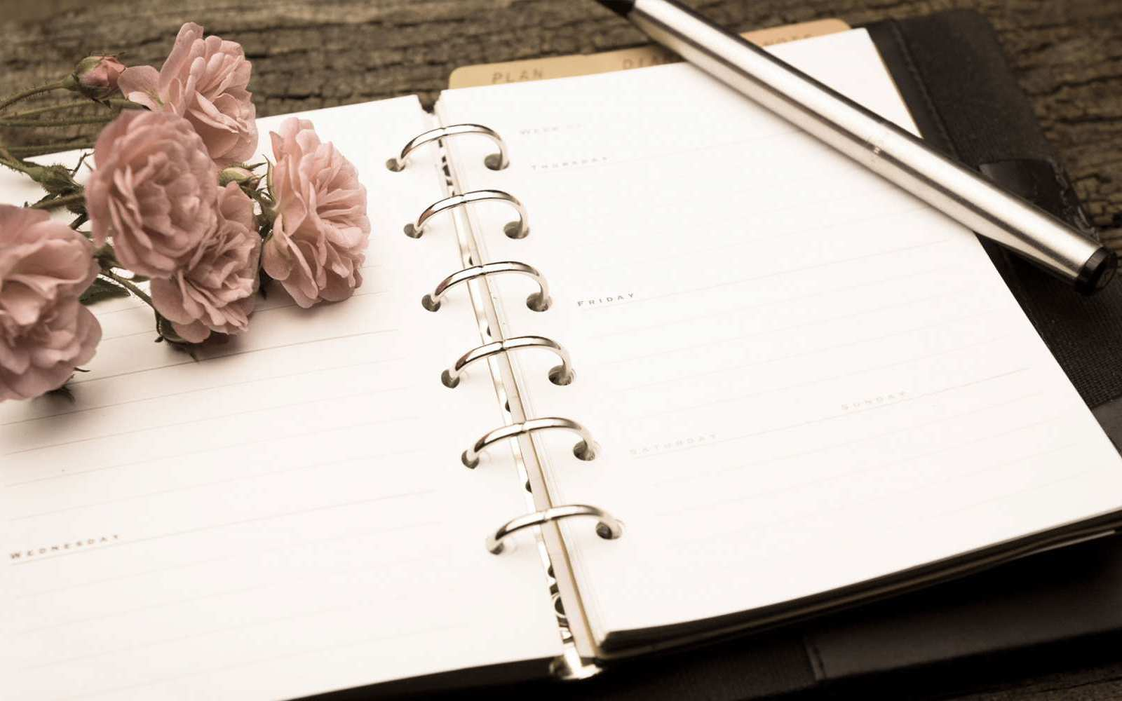 Wedding Essentials: Ein Organizer – für alles Wesentliche bei den Vorbereitungen.